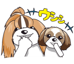Shih Tzu Stamp2 sticker #955728