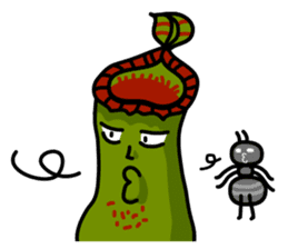 Nepenthes LINE Stickers sticker #958099