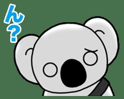 White koala returns sticker #960066