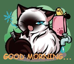 Himalayan Cat - MoBu sticker #963859