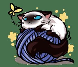 Himalayan Cat - MoBu sticker #963878