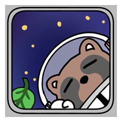 Racoon dog in the space