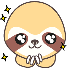 Soni, the cute little sloth