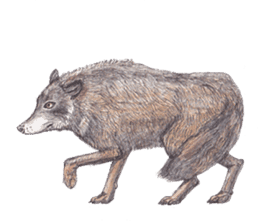 Wolf's song(1) sticker #993649