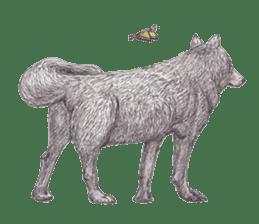 Wolf's song(1) sticker #993670