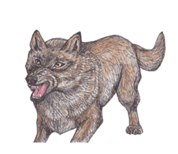 Wolf's song(1) sticker #993674