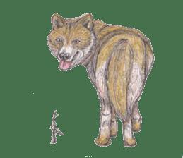 Wolf's song(1) sticker #993679