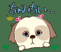 Shih Tzu Marlon daily life sticker sticker #993741