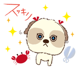 Shih Tzu Marlon daily life sticker sticker #993758