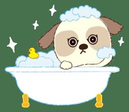 Shih Tzu Marlon daily life sticker sticker #993759