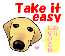 It is a Labrador sticker #1001542