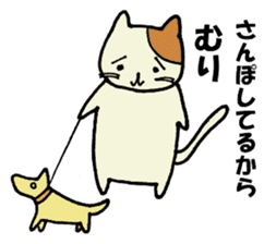 Impossible cat sticker #1004977