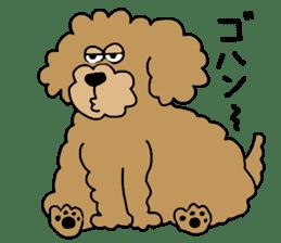 Funny poodle like a human. sticker #1005011