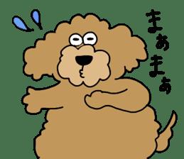 Funny poodle like a human. sticker #1005025