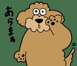 Funny poodle like a human. sticker #1005027