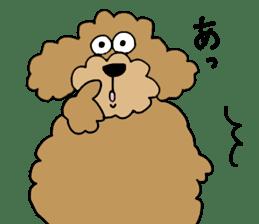 Funny poodle like a human. sticker #1005028