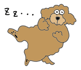 Funny poodle like a human. sticker #1005029