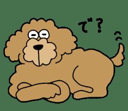 Funny poodle like a human. sticker #1005030