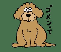 Funny poodle like a human. sticker #1005040