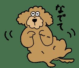 Funny poodle like a human. sticker #1005042