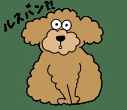 Funny poodle like a human. sticker #1005043
