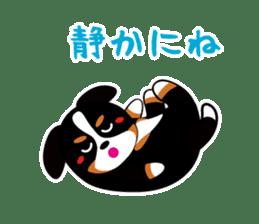 bani-cyan.-2 BMD sticker #1005220