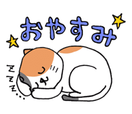 Three cats sticker #1018223