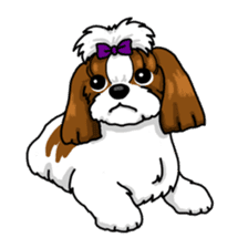 Daily life of Shih Tzu sticker #1019488