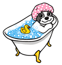 Daily life of Shih Tzu sticker #1019493