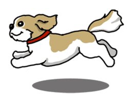 Daily life of Shih Tzu sticker #1019500