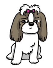 Daily life of Shih Tzu sticker #1019503