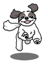 Daily life of Shih Tzu sticker #1019507