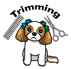 Daily life of Shih Tzu sticker #1019508