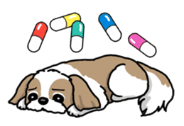 Daily life of Shih Tzu sticker #1019509