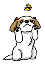 Daily life of Shih Tzu sticker #1019520