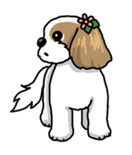 Daily life of Shih Tzu sticker #1019524
