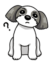 Daily life of Shih Tzu sticker #1019525