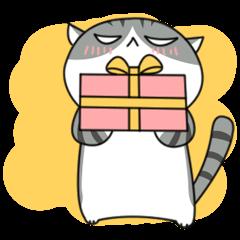 It's a cat! Vol.2
