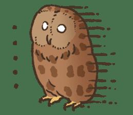 Raptors sticker (Owl,Eagle,Hawk,etc.) sticker #1022452