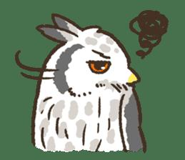 Raptors sticker (Owl,Eagle,Hawk,etc.) sticker #1022456