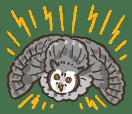 Raptors sticker (Owl,Eagle,Hawk,etc.) sticker #1022463