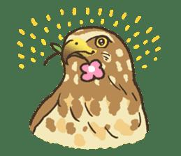 Raptors sticker (Owl,Eagle,Hawk,etc.) sticker #1022465