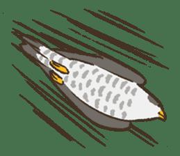 Raptors sticker (Owl,Eagle,Hawk,etc.) sticker #1022467