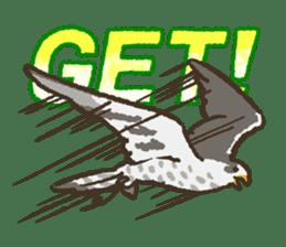 Raptors sticker (Owl,Eagle,Hawk,etc.) sticker #1022468