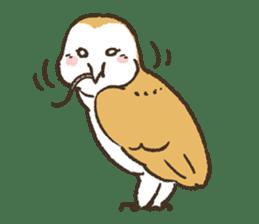 Raptors sticker (Owl,Eagle,Hawk,etc.) sticker #1022472