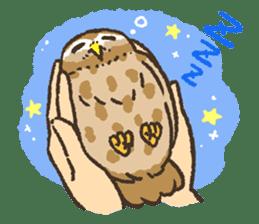 Raptors sticker (Owl,Eagle,Hawk,etc.) sticker #1022475