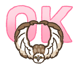Raptors sticker (Owl,Eagle,Hawk,etc.) sticker #1022477