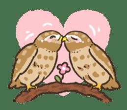 Raptors sticker (Owl,Eagle,Hawk,etc.) sticker #1022479