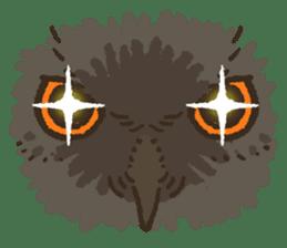 Raptors sticker (Owl,Eagle,Hawk,etc.) sticker #1022481