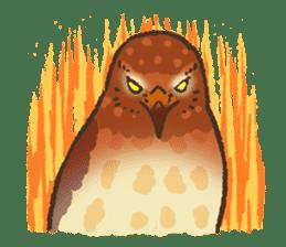 Raptors sticker (Owl,Eagle,Hawk,etc.) sticker #1022483